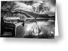 Contemplation In Monochrome Greeting Card
