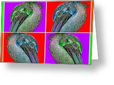 Contemporary Pelicans Greeting Card