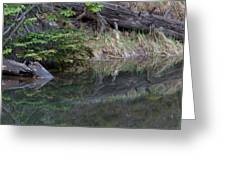 Continental Divide Pond Greeting Card