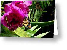 Continuance Greeting Card