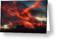 Contrails And Sunset Greeting Card