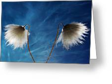 Conversing Wind  Greeting Card