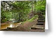 Cook Forest Toms Run Steps Greeting Card