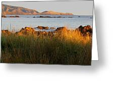 Cook Strait Greeting Card