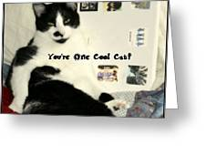 Cool Cat Greeting Card Greeting Card