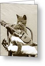 Cool Cat Playing A Guitar Circa 1900 Historical Photo By Photo  Henry King Nourse Greeting Card