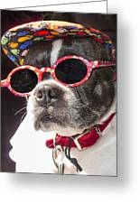 Cool Daddy Pooch Greeting Card