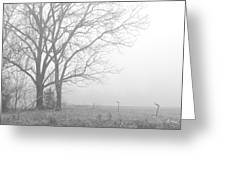 Cool Damp Foggy Greeting Card