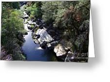 Cool Mountain Creek Greeting Card