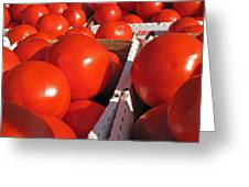 Cool Tomatoes Greeting Card