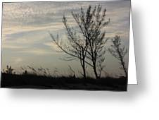 Cool Winters Day Greeting Card