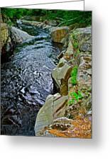 Coos Canyon 332 Greeting Card