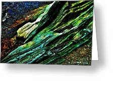 Coos Canyon Y241 Greeting Card