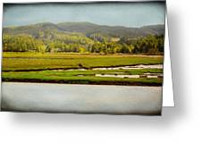 Coos River Greeting Card