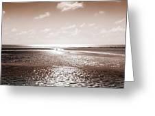Copper Beach Greeting Card