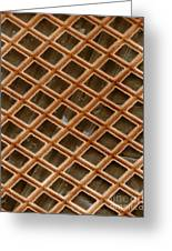Copper Electron Micrograph Grid Greeting Card