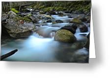 Coquihalla River 2 Greeting Card