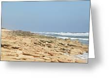 Coquina Rock On A Florida Beach Greeting Card