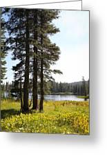 Cora Lake-2 Greeting Card