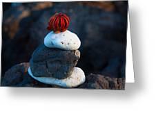 Coral Dandy Greeting Card