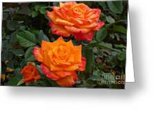 Family Of Three Greeting Card