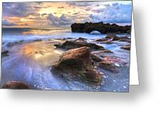 Coral Garden Greeting Card by Debra and Dave Vanderlaan