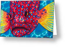 Coral Grouper Greeting Card by Daniel Jean-Baptiste