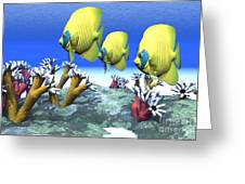 Coral Moods Greeting Card by Corey Ford
