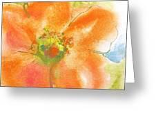 Coral Poppy II Greeting Card