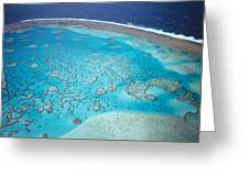 Coral Reef Capricornia Cays Np Greeting Card