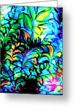 Coral Reef Beauty Greeting Card