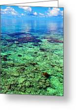 Coral Reef Near The Island At Peaceful Day. Maldives Greeting Card