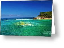 Coral Seas Haiti Greeting Card