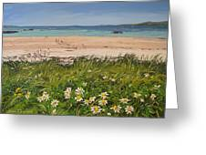 Coral Strand Summers Day Connemara Ireland Greeting Card
