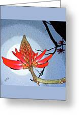 Coral Tree Greeting Card by Ben and Raisa Gertsberg