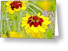 Coreopsis Flowers Greeting Card