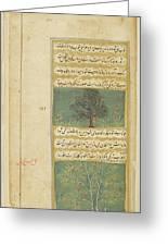 Corinda Tree (carissa Carandas) Greeting Card