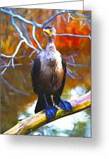 Cormorant Reds Greeting Card