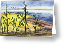 Corn Field By The Sea Greeting Card