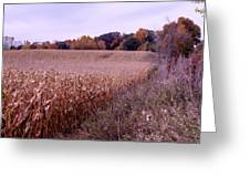 Corn Field In The Fall Greeting Card