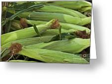 Corn New Jersey Grown  Greeting Card