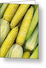 Corn On The Cob II Greeting Card