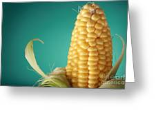 Corn On The Cob Greeting Card