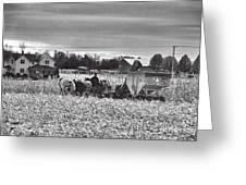 Corn Picker November 2013 Greeting Card