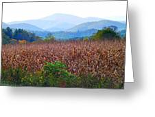 Cornfield In The Mountains Greeting Card