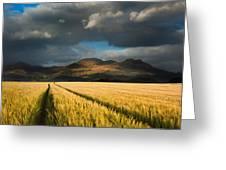 Cornfield Mountains Greeting Card
