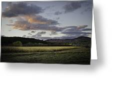 Cornfield Sunset Greeting Card