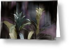 Cornflower Apparition Greeting Card