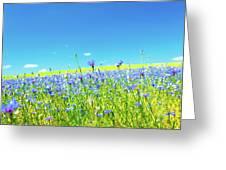 Cornflowers In A Field Greeting Card