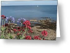 Cornwall Newlyn Coast One Greeting Card